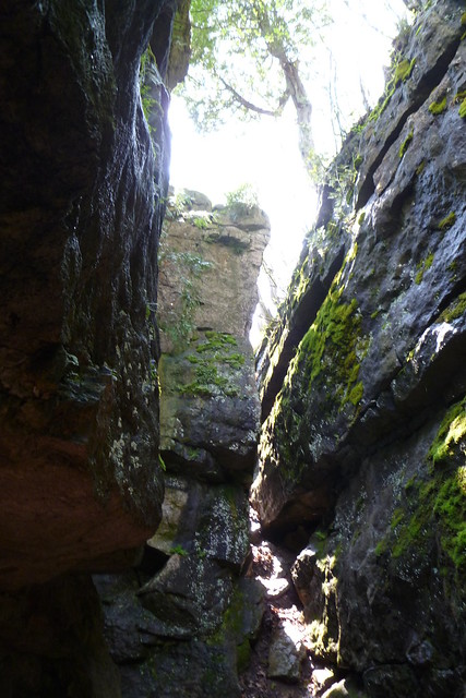 Collingwood Scenic Caves & Nature Preserve
