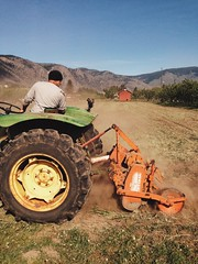 Farming w/ Q