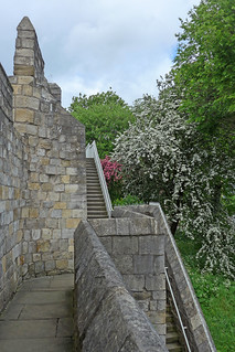 Image of City Walls. york city walls