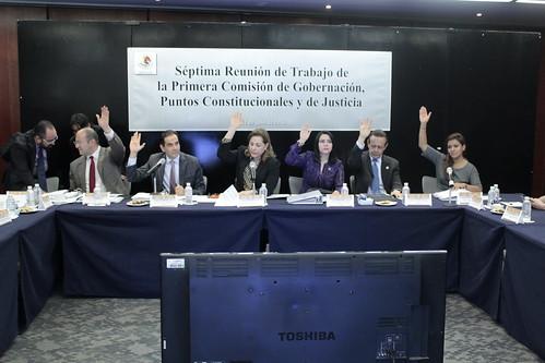 El día 12 de julio del 2016 se llevó a cabo en el Senado de la República la séptima reunión de trabajo de la Primera Comisión de Gobernación, Puntos Constitucionales y de Justicia.