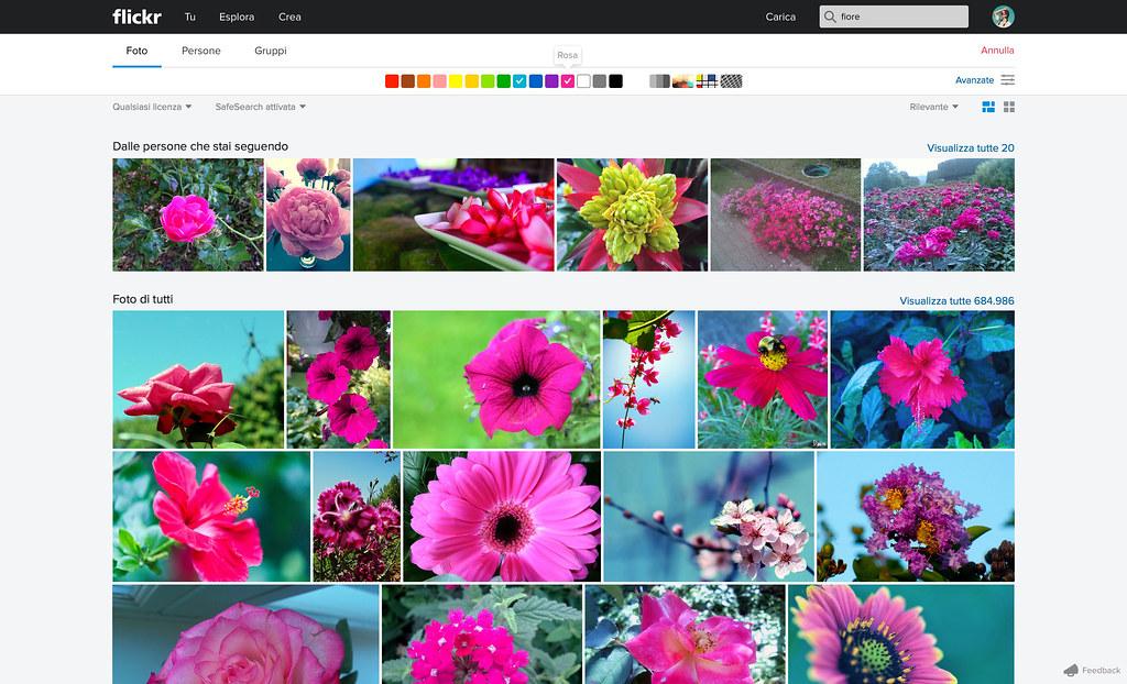 Search_2color