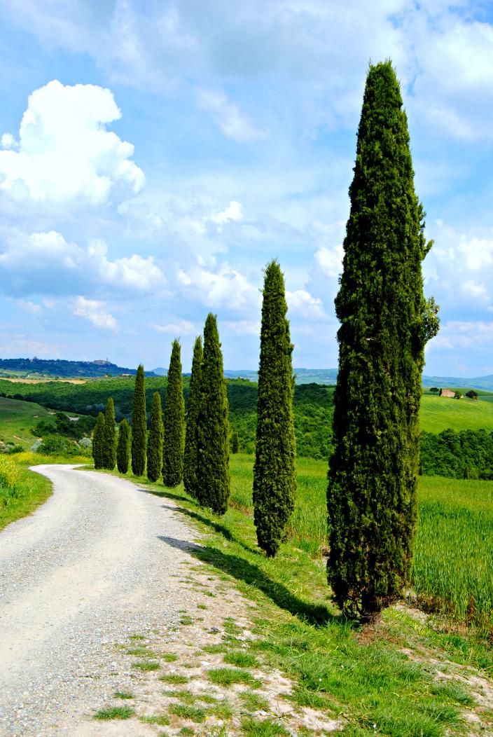Pienza_Tuscany, Itay (014)