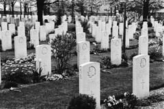 Canadese militaire begraafplaats in Groesbeek, herdenking 1980   Canadian military cemetary at Groesbeek, The Netherlands, commemoration 1980   Cimetière canadien à Groesbeek Les Pays-Bas, commémoration 1980