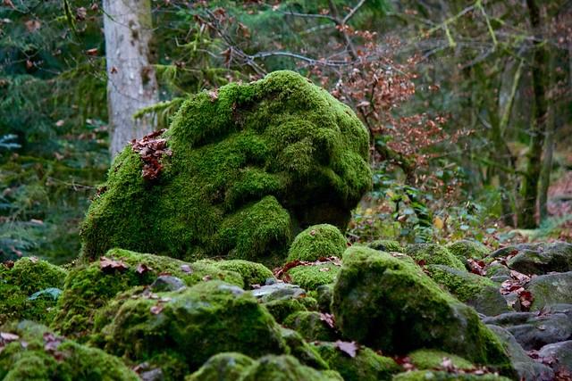 Cascades du Tendon