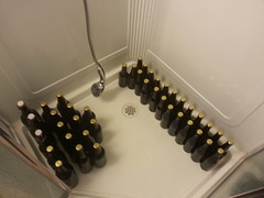 Mosaic SMaSH bottled!