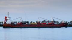 ms Floragracht - Nieuwe Waterweg - Port of Rotterdam