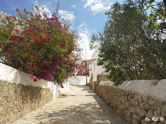Ibiza Santa Eularia - Puig de Missa