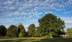12/365v3 Mackerel Sky