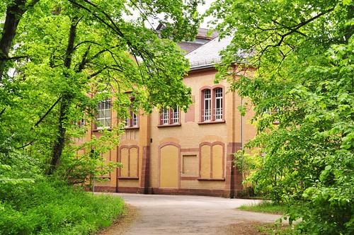 Mai-Spaziergang im Käfertaler Wald Mannheim Wasserwerk