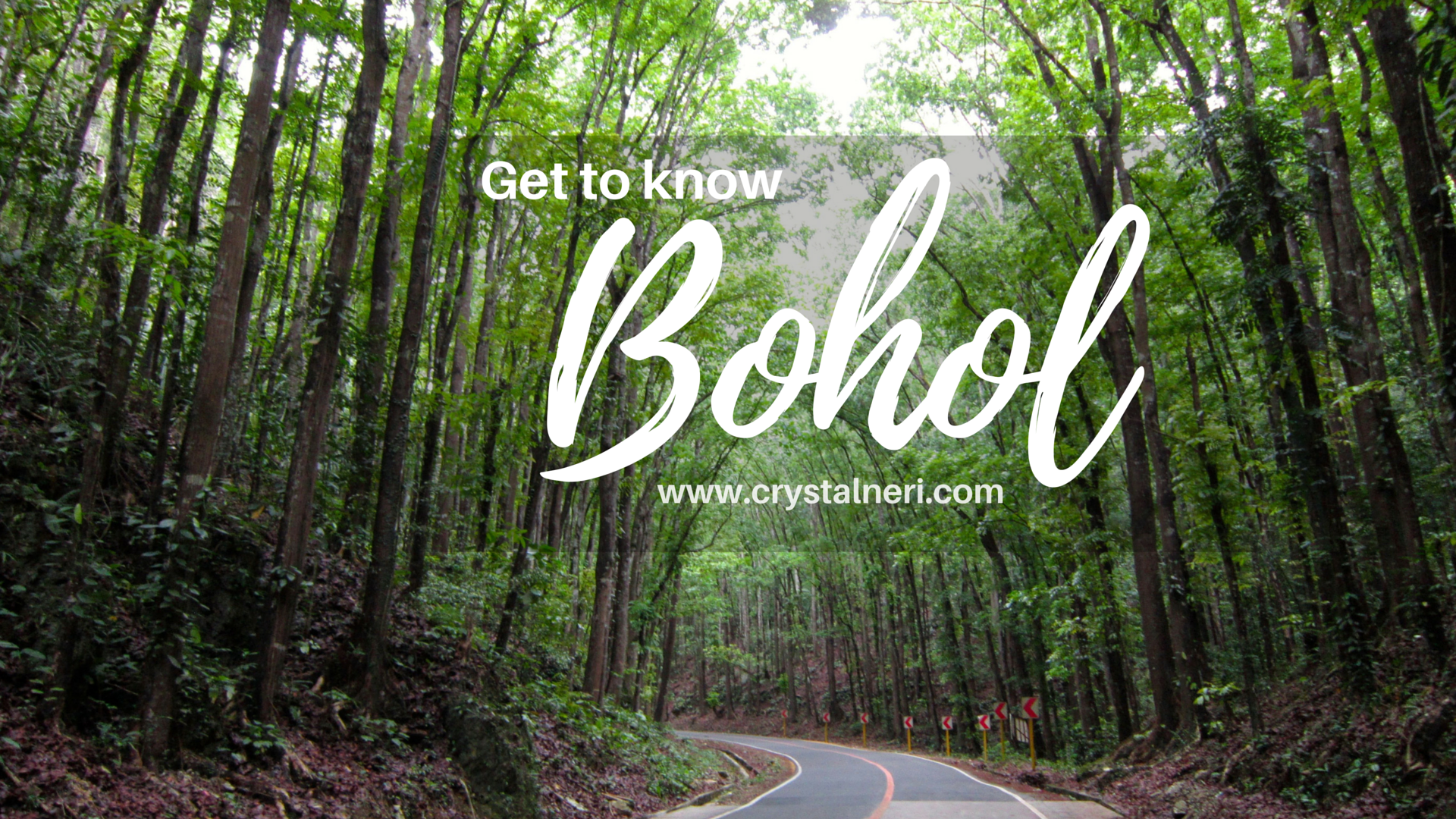 bohol-philippines-what-to-do-1