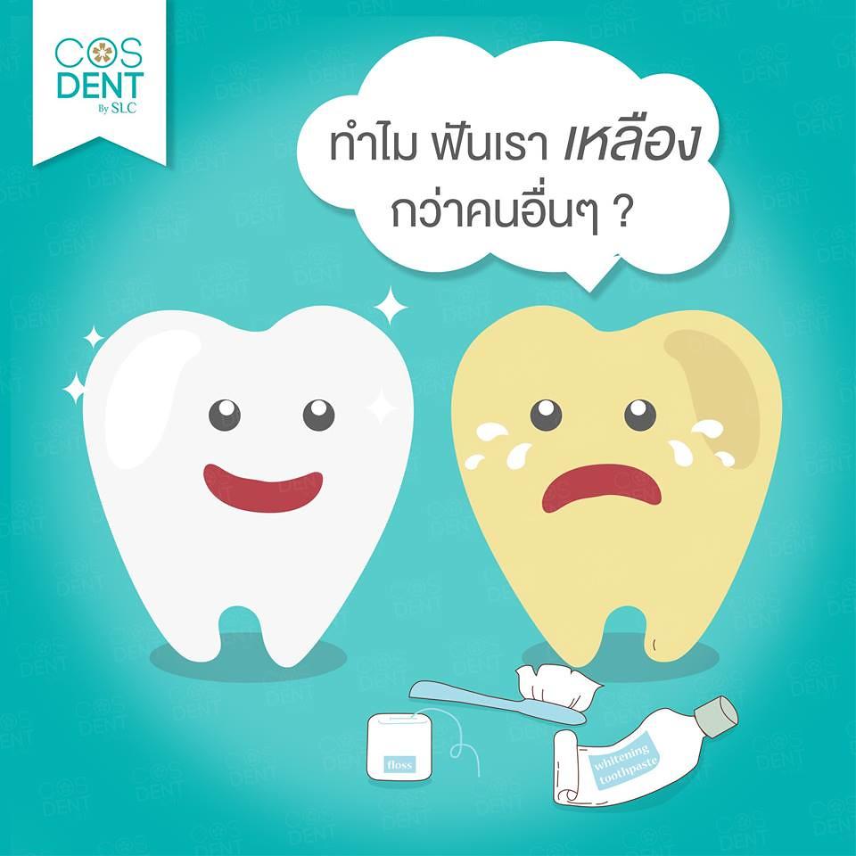2015-0031 ทำไม ฟันบางคนจึงมีเหลืองกว่าคนอื่นๆ?