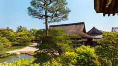寝殿と北庭 - 仁和寺 / Ninna-ji Temple