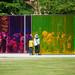 Colour activity house (カラー・アクティヴィティ・ハウス)