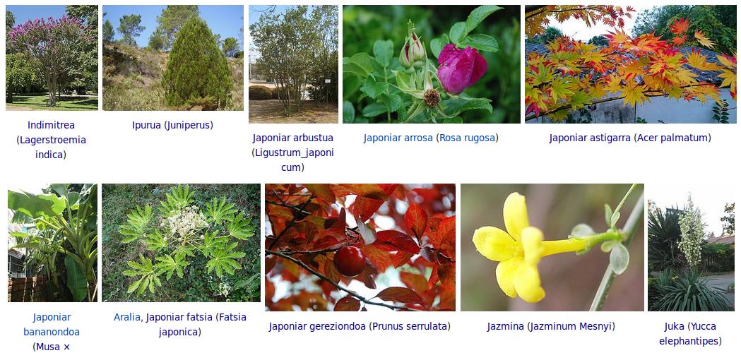 Lorebaratzak archives page 2 of 5 uliako auzo elkartea for Viveros frutales wikipedia