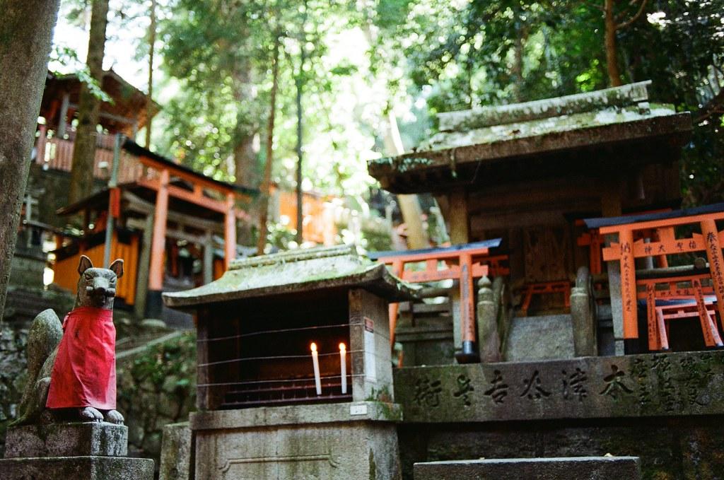 伏見稻荷 京都 Kyoto, Japan / Kodak ColorPlus / Nikon FM2 開始挑戰走稻荷山,還好一路上都包圍在樹林裡。  這應該是祖先住的地方吧,但吸引我注意的是稻荷神狐狸的雕像,這裡有很多!  Nikon FM2 Nikon AI AF Nikkor 35mm F/2D Kodak ColorPlus ISO200 0993-0007 2015/09/29 Photo by Toomore