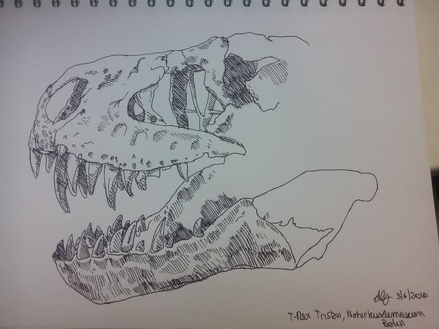Tyrannosaurus rex: Tristan Otto