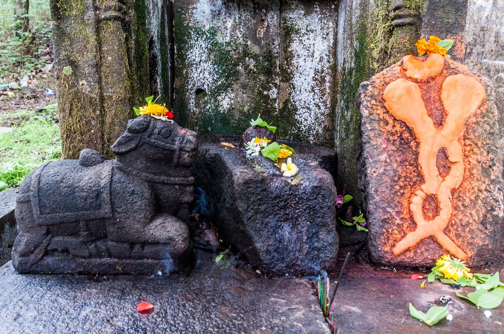 BrahmagiriTrekTrimbakeshwar_23
