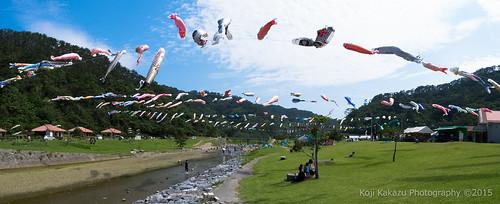 奥ヤンバル鯉のぼり祭り-16