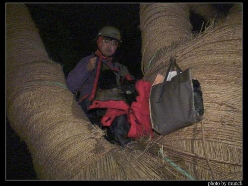 綠黨溫炳原暗夜爬上樹護樹。攝影:Munch