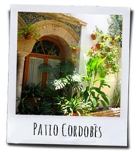De schitterende met bloemen behangen patio's van de stad Cordoba