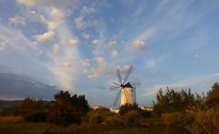 Spanje - Ibiza - Sant Antoni de Portmany