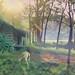 Dreamland by kevolution15