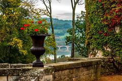 Dordogne Bordeaux