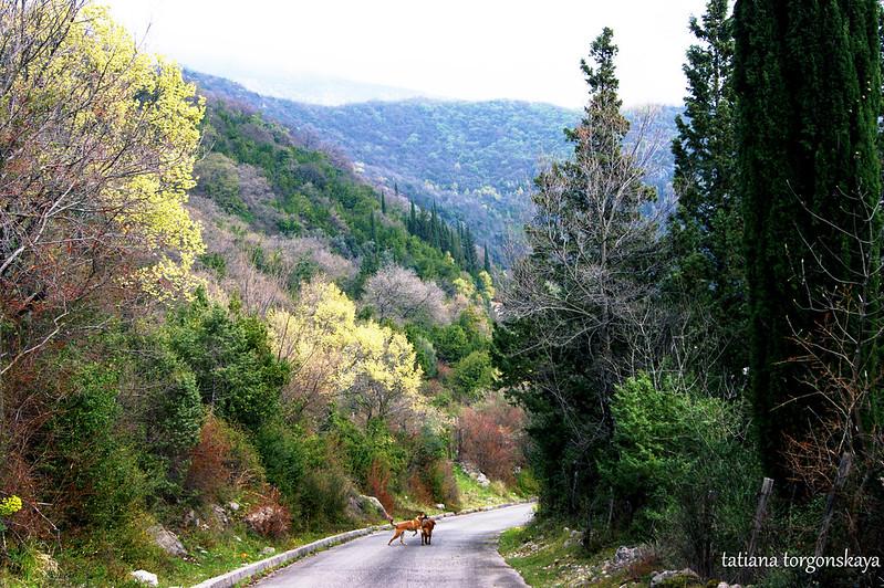 Апрель в горах