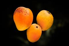 Love for mango 3