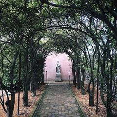 Happy Sixo De Mayo. #latergram #yesterday #garden #tunnel #statue #bust #arboretum #winchester #va #Shenandoahvalley #walkway #mysterious #regal #justgoshoot #explore