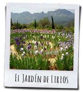 De iristuin in Marnes, in het hart van de Sierra Bernia