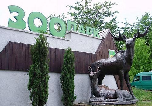 Зоопарк просить 1,9 мільйона гривень