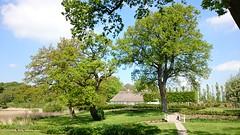 Schloss Gravenstein10