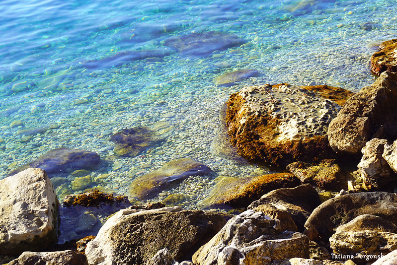 Камни и Адриатика