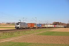 514A4541 - Photo of Rottelsheim