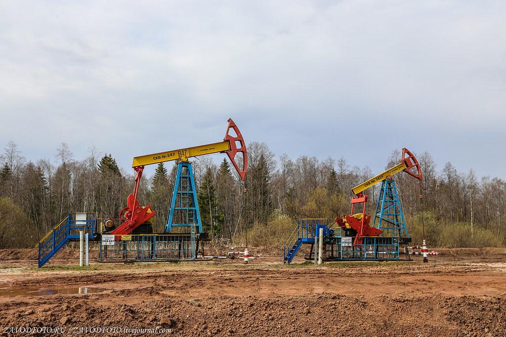 Кто был основателем первого в России нефтяного промысла