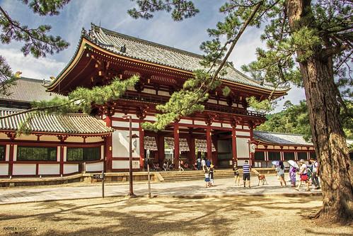 Tōdai-ji Temple - Nara (Japan)