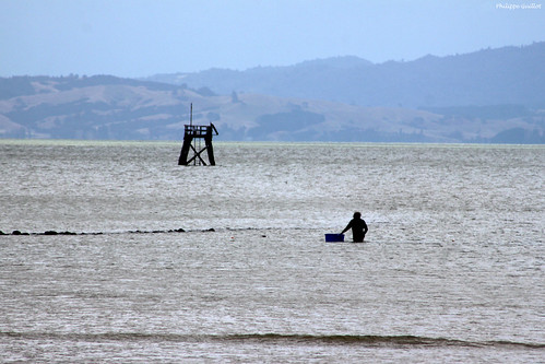 Thames : pêcheur à pied