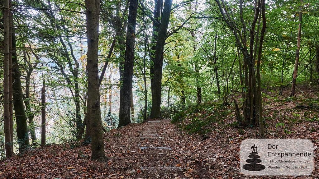 Abstieg nach Ludwigshafen