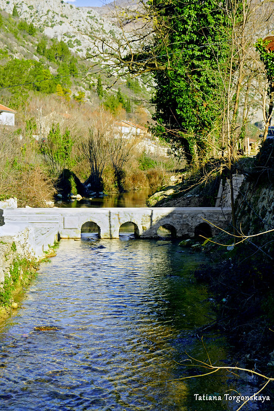 Вид на мостик Турковичей