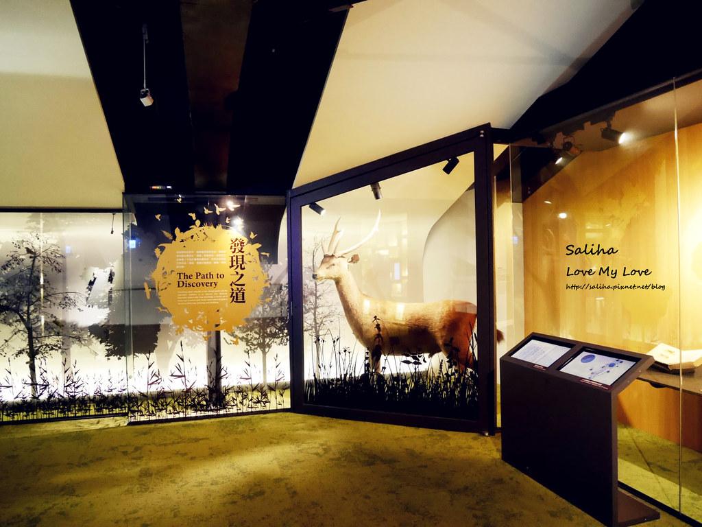 台北車站附近景點推薦雨天親子好玩去處台博館土銀展示館展覽文青旅行 (6)