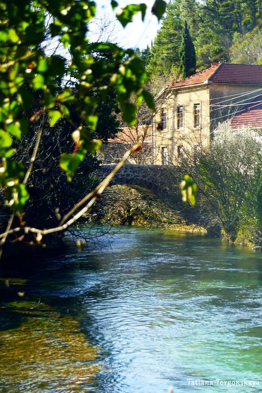 Вид на мост Сары Кашикович