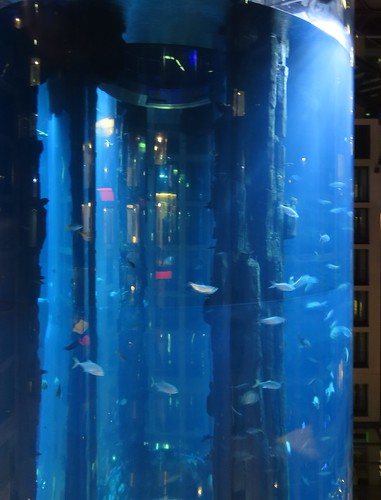 Aquarium inside Radisson Blue hotel