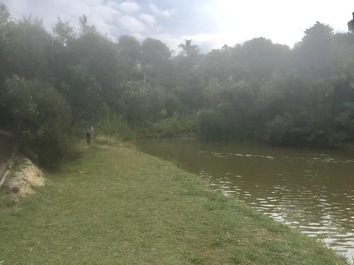 Rona Park 4