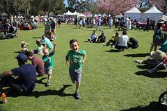 Orange County Cherry Blossom Festival