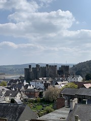 View of Conway Castle from the house