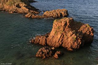 Rochers éclairés au soleil couchant - Pointe de Plouha (22) - Bretagne - France