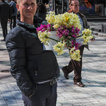 Selling flowers along a busy promenade in Tirana
