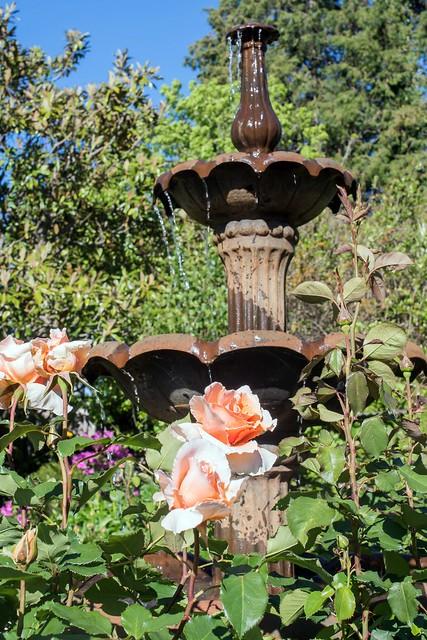 Garden 3 Fountain Thomas, Nikon D810, AF-S Nikkor 50mm f/1.4G