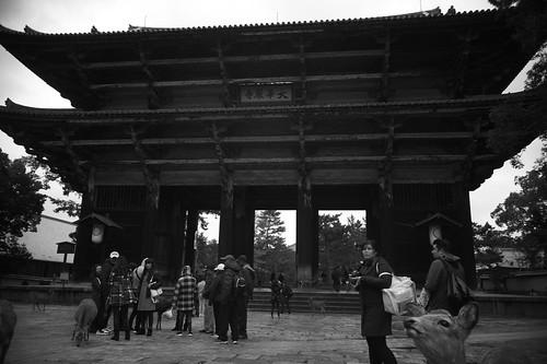 Todai-ji Temple Great South Gate